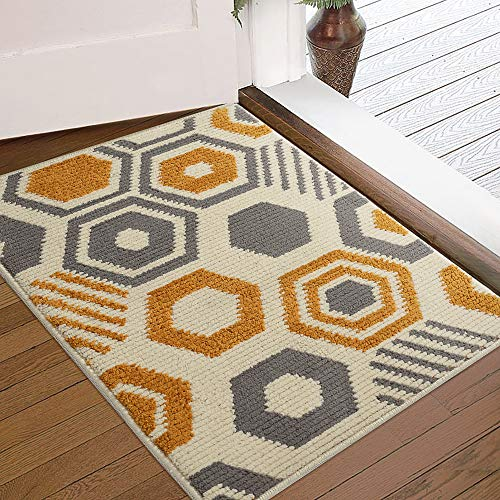 Color&Geometry Indoor Doormat Indoor Outdoor 24'x36' Mat Waterproof, Non Slip Washable Quickly Absorb Moisture and Resist Dirt Rugs for Entrance