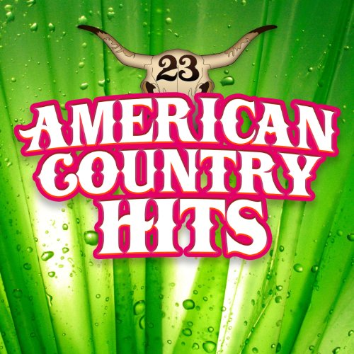 Todays Country Hits, Vol 23